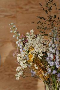 Билки 3 - цветя